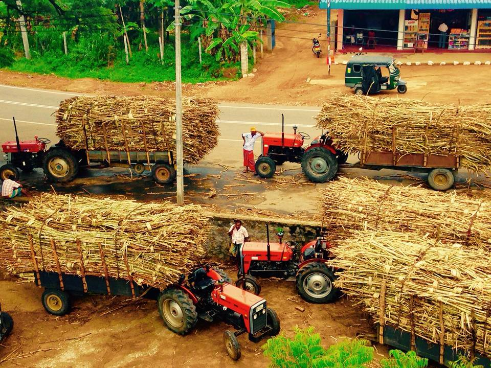 TAFE tractors powering the Sri Lankan sugar industry