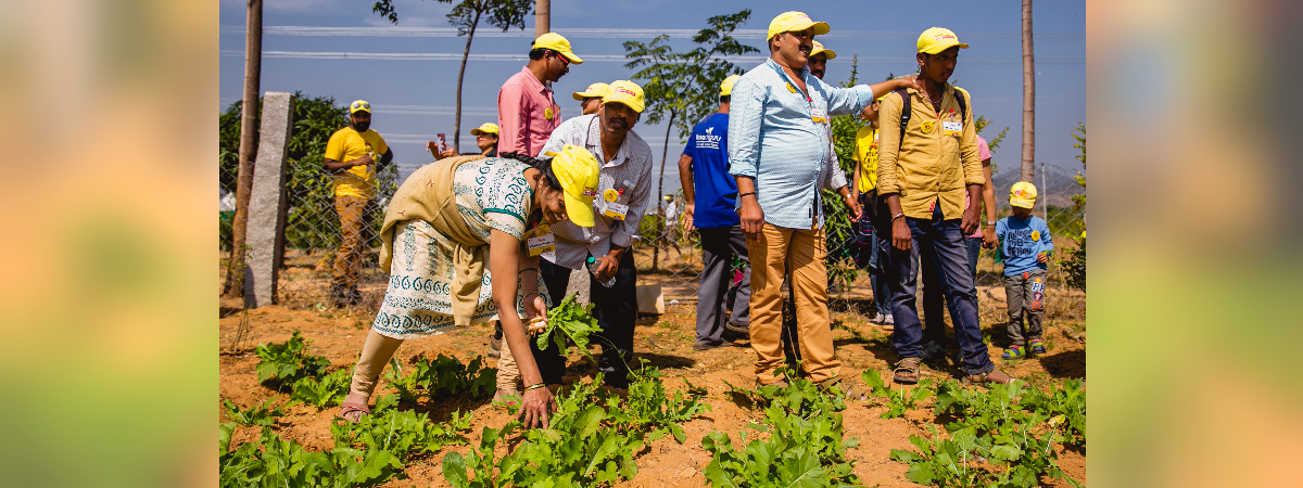 Participants harvesting crops in TAFE - Be a #FarmDost organised event 'Day at a Farm'